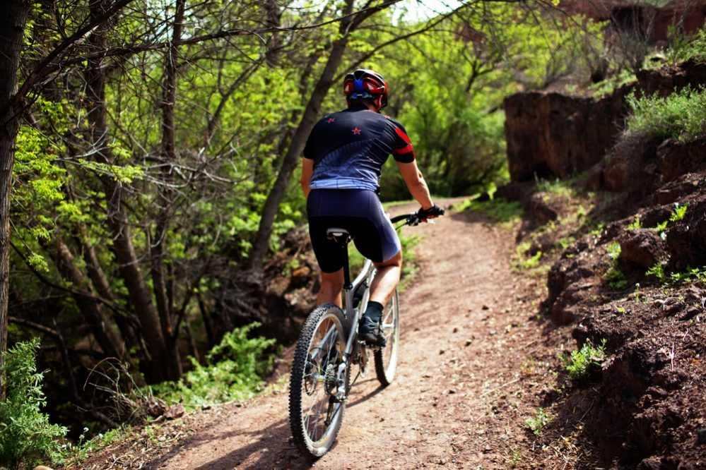 Diferencias bici montana