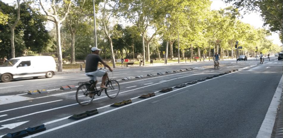 segregated bike lanes