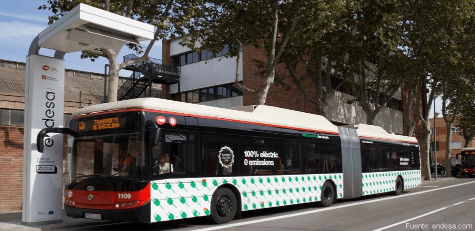 renovació de la flota d'autobusos